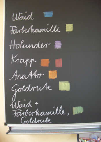 Tafelbild Pflanzenfarben