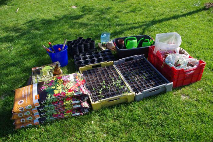 Arbeitsmaterial und Pflanzen
