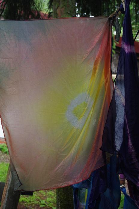 Pflanzenfarben auf Seide